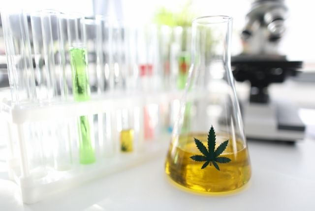 Read more about the article CBD DOSAGE: HOW MUCH SHOULD YOU TAKE?