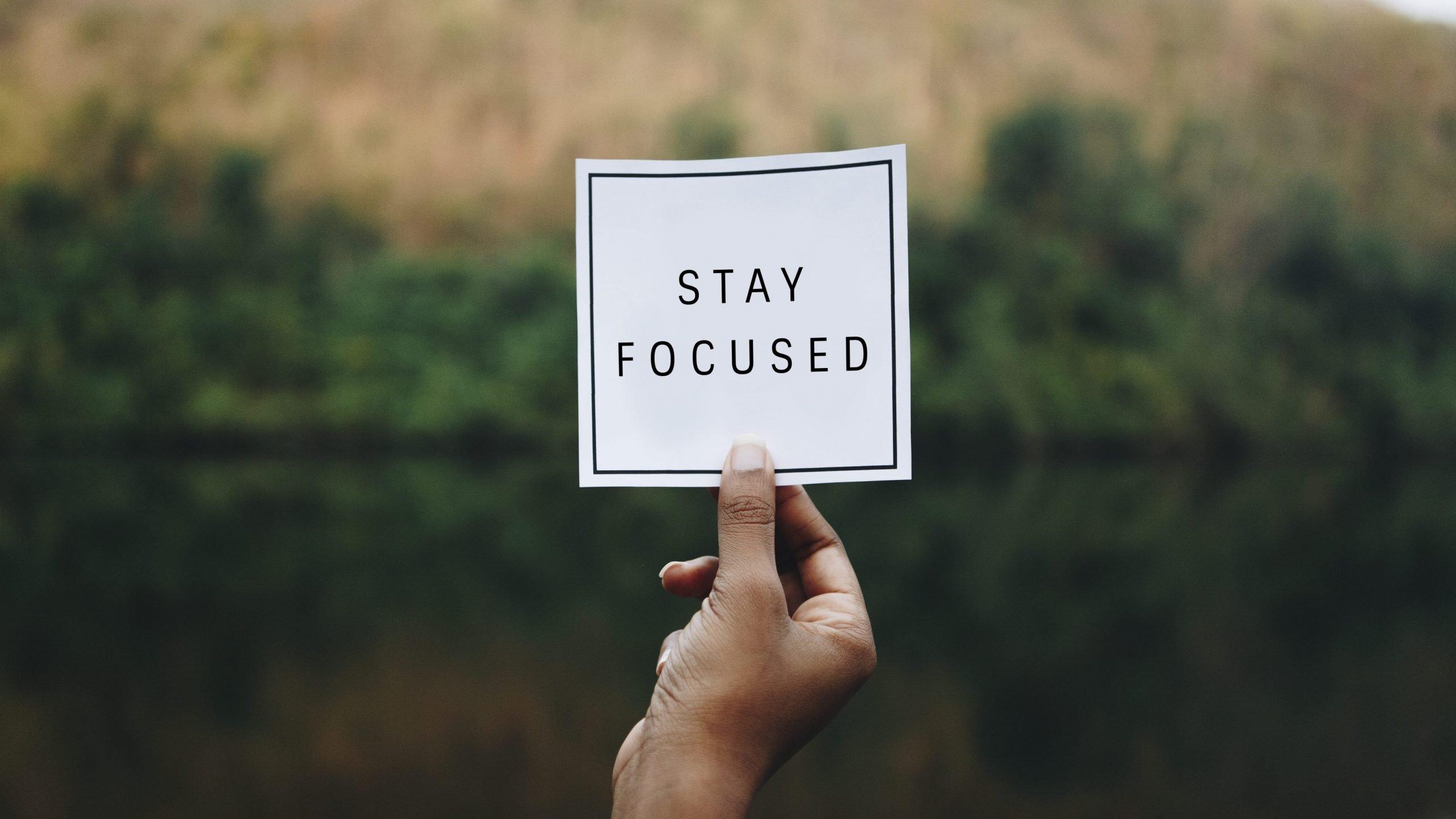 cbd focus