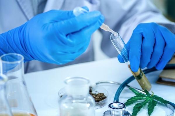 laboratory test results cannabidiol