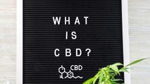 What is CBD Swiss Shop